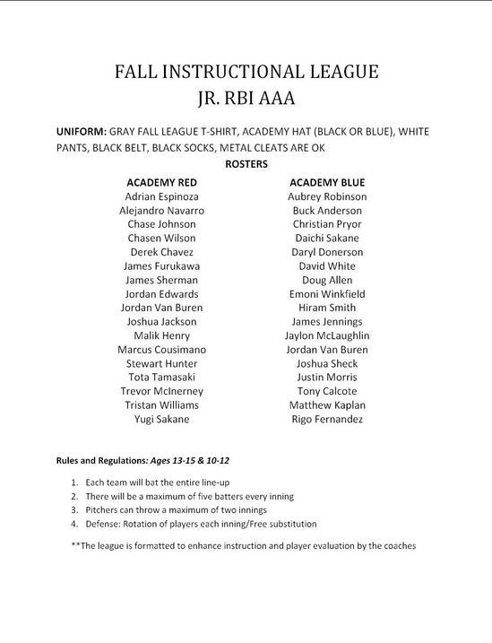 RBI AAA Divison Roster.JPG